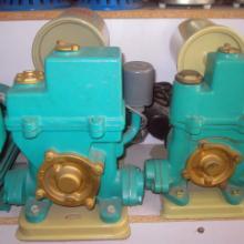 供应临沂批发冷热水自动泵
