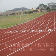 13MM塑胶跑道图片