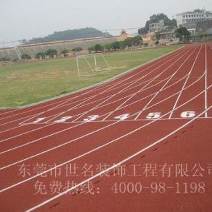 龙山200米标准塑胶跑道图片