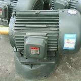 Y系列三相电动机|山东Y系列三相电动机供应商|山东Y系列三相电动机直销价格|山东Y系列三相电动机批发
