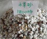 北京鱼缸水草砂图片
