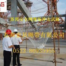 苏邦牌涤纶安全网 建筑安全网 阻燃安全网 价格优惠 质量保证批发