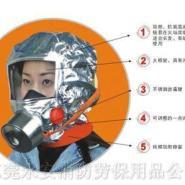 东莞防毒防尘面具口罩呼吸器图片
