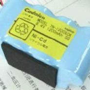 SP500电池图片