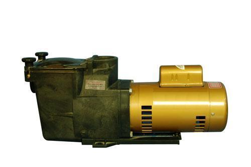 原装进口 美国HAYWARD喜活SP3004泳池循环过滤泵