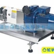 卫生级凸轮转子泵凸轮式双转子泵图片