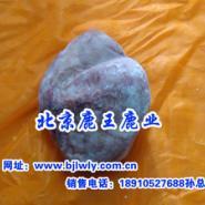 2012年梅花鹿鞭胎肉鞭膏胎膏茸片图片