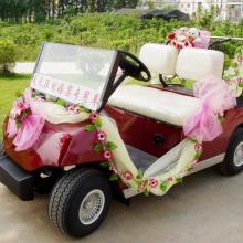 供应电动高尔夫球车LT-A2+2图片