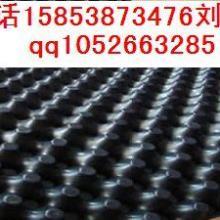 供应蓄排水板HDPE排水板