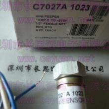 供应C7027A1049火焰检测器