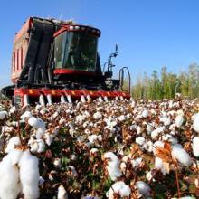 供应二手采棉机如何进口?二手农业机械进口报关公司