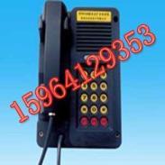 KTH116防爆电话图片
