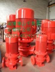 ISG立式单级消防泵图片/ISG立式单级消防泵样板图 (4)