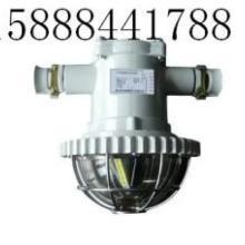 供应15瓦LED巷道灯,矿用的15瓦LED巷道灯环保灯具15瓦L