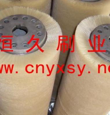 清洗机械毛刷图片/清洗机械毛刷样板图 (2)