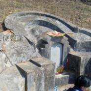 墓地调理图片