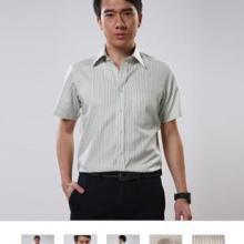 供应厂家供应广州定做风压领正装衬衫