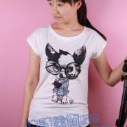 韩版女士上衣批发纯棉针织短袖T恤图片