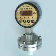 供应隔膜数字压力控制表BD-801K