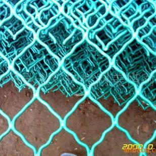 藏獒养殖美格网涂塑美格网浸塑网片图片
