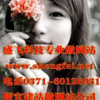 郑州传输交换设备网站建设