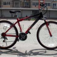 捷安特欧野10自行车图片