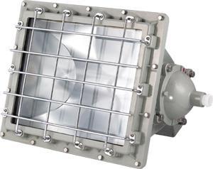 BAT51-隔爆型投光灯图片