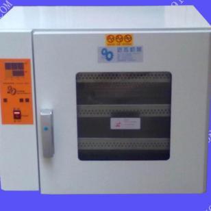 干燥恒温箱图片