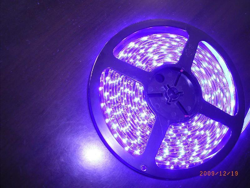 供应四川LED灯条成都LED灯条