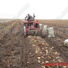 河南厂商最新研发土豆收获机图片