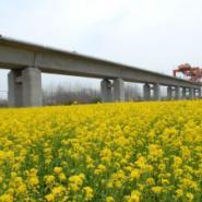 供应桥梁支座型号桥梁支座图支座灌浆料桥梁支座型号桥梁支座的作用