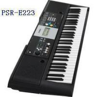 键盘类乐器卡西欧电子琴