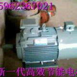 温州专业YX3型高效节能电机制造商 YX3高效节能电机 YX3高效节能电机供应
