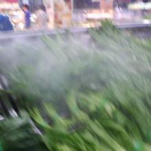 供应喷雾保鲜机