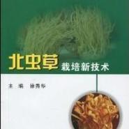 2012n广西北虫草种植技术大全图片