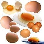 鸡蛋色素图片