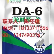 厂家供应DA-6原药 98DA-6