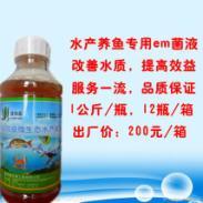 益加益水产养鱼专用em菌种菌液批图片