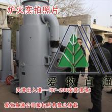 专业生产供应病死动物无害化处理设备DF-150病死动物无害化处理
