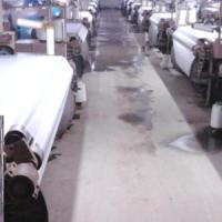 河北50D涤弹网络丝批发 保定生产50D涤弹网络丝厂家,优质50D涤弹网络丝