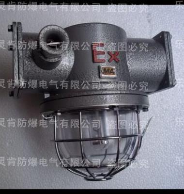 隔爆防水高压钠灯图片/隔爆防水高压钠灯样板图 (1)