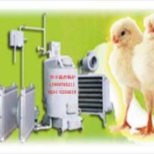 供应新型养鸡温控锅炉鸡舍升温锅炉批发
