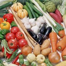 供应叶菜类供应信息