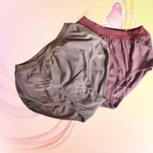供应六合通脉内裤女士收腹美体内裤批发磁石内裤