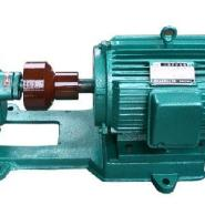2CG高温齿轮泵/泊头高温齿轮泵批发图片