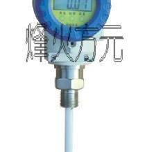 供应国标BP600电容式批发