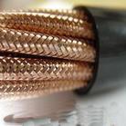 本安计算机电缆-WDZYDPLYDPL电缆图片