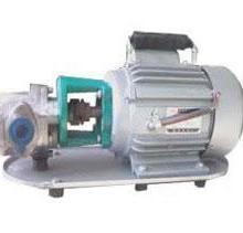 专业制造销售WCB型(普通型不锈钢型)低压力微型手提式节能齿轮输油泵批发