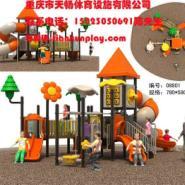供应万州区大型木质玩具,重庆大型木质玩具款式,忠县 大型木质玩具安装