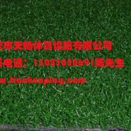 重庆巫山县足球场人造草坪图片
